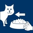 Katze füttern